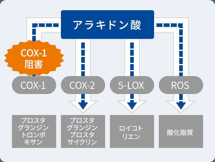 COX-1阻害 図